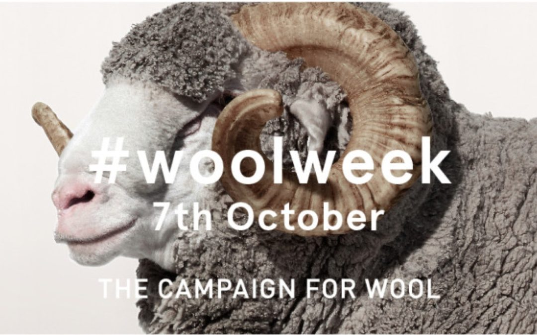 Blackhouse bleats about wool week
